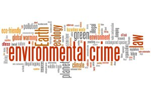 Environmental Crimes